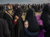 FOTKA ROKU: Ivor Prickett, Panos Pictures, The New York Times - Boj o Mosul