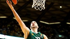 Nick Calathes z Panathinaikosu