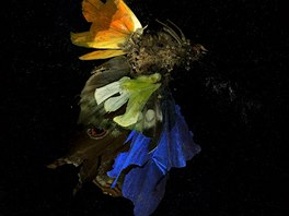 Mat Collishaw, Insecticide 15, 2007, Courtesy the artist and...