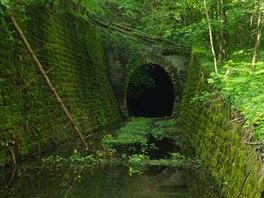 Tunel pod Dielikom je chráněné hnízdiště netopýrů.