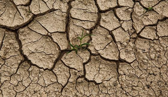 Takto vypadá v květnu 2018 vyschlá půda v areálu Všesportovního stadionu v...
