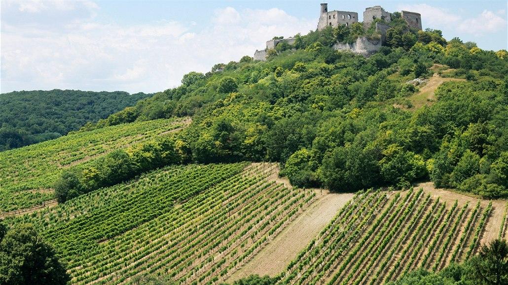 Ochutnávka vína z roku manchester