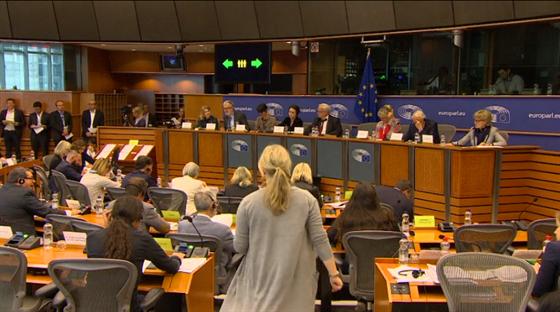 Hlasování o návrhu na půdě Evropského parlamentu (20. června 2018)