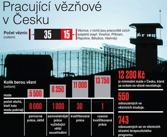 Pracující vězňové v Česku