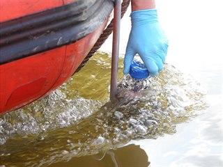 Členové Greenpeace odebírají vzorky vody z Labe. Budou v nich hledat...