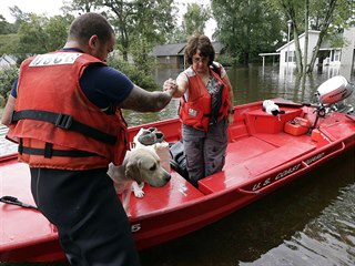 Evakuace ženy se psem během záplav vyvolaných hurikánem Florence (16. září 2018)