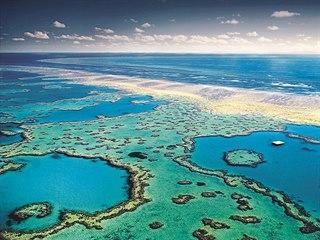 Největší zvířecí stavbou světa je Velký bariérový útes. Korálové dílo dlouhé...