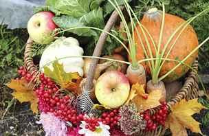 Potraviny, které vám na podzim pomohou s hubnutím i posílením imunity