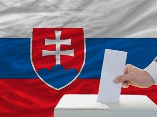 Volby, Slovensko, ilustrační snímek