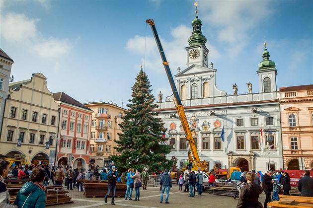 Vánoční strom dorazil do Budějovic. O víkendu se otevře kluziště