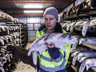 Největší kožešinová farma v Česku končí. V tomto týdnu zde zkožkovali poslední...
