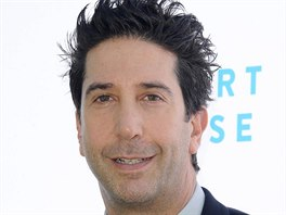 David Schwimmer (The 2018 Rape Foundation Brunch, Beverly Hills, 7. října 2018)
