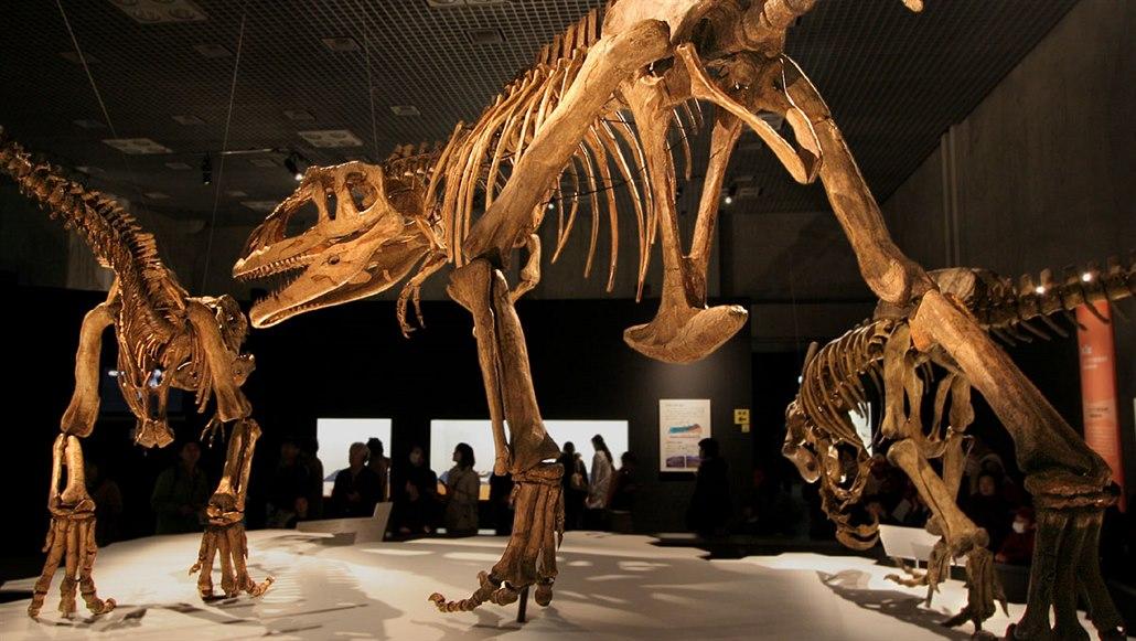 Gigantický ještěr se žraločími zuby mohl žít a lovit ve smečkách