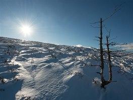 Na otevřených sněhových pláních Toku si budete připadat jako na hřebenech...