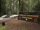 Jedním z mála turistických míst v okrese je Státní park Humboldt Redwoods s...