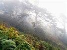 Minimálně zmapovaný a turistickými stezkami nepropletený kalifornský okres...