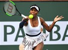 Venus Williamsová returnuje na turnaji v Indian Wells.