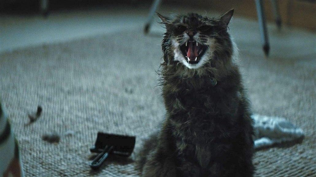 Stephen King je pořád král, jeho horor Řbitov zviřátek vládl kinům