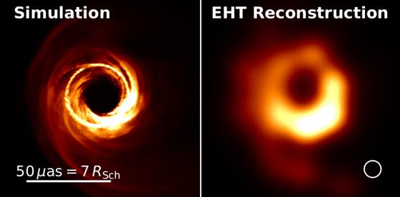 Ukázka toho, jak by mohl vypadat snímek černé díry na snímku projektu EHT....