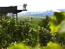 Z vesničky Eisenberg an der Pinka vybíhá do nedozírných lánů vinné révy...