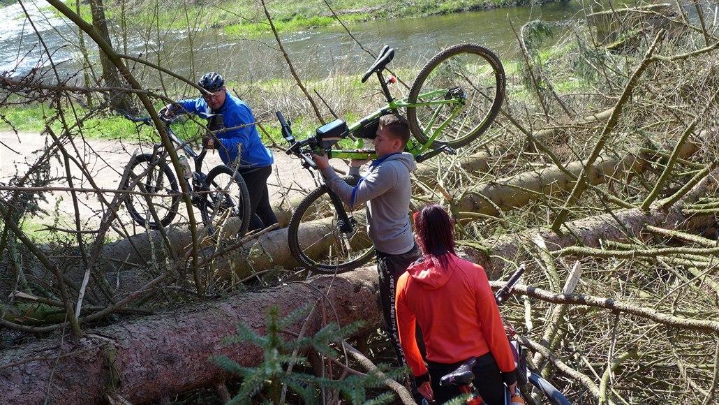 Majitel pokácel stromy na mezinárodní cyklotrasu, spor pokračuje