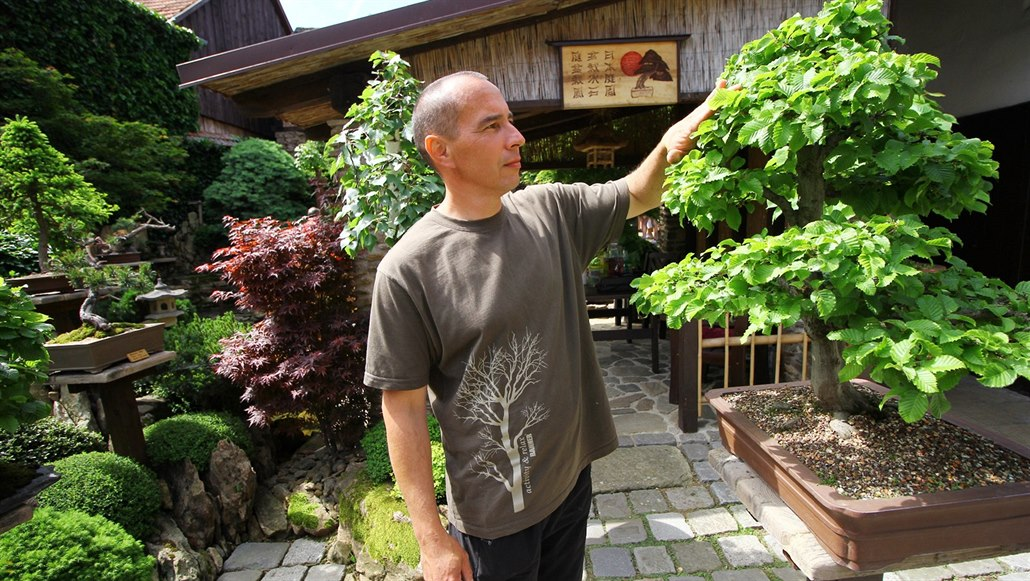 Milovník bonsají vytvořil z hromady kamení u domu japonskou oázu klidu