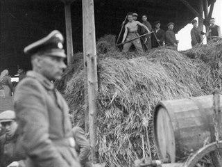 Vězni tábora v Lípě při práci. V popředí SS dozorce tábora Anton Schmeiler....