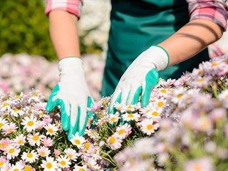 Ochranné rukavice jsou základním prvkem při práci na zahradě.