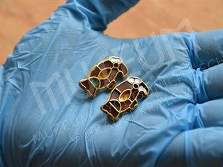 Archeologové našli v nevyloupeném hrobě v Sendražicích dvě zlaté spony...