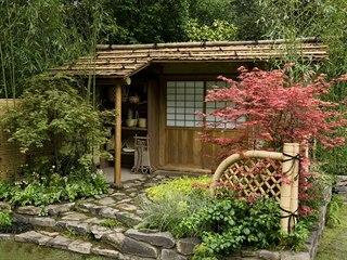 Bambus patří do každé zahrady s japonskými prvky.