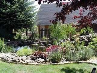 Jezírko dodává zahradě energii vody a jako vodní zdroj přitahuje spoustu...