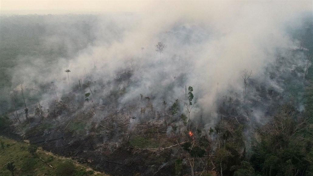 Plíce planety jsou naruby. Amazonský prales vyrobil víc CO2, než pohltil
