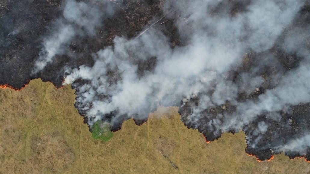 Plíce světa se mění. Z amazonského pralesa se do roku 2064 stane savana