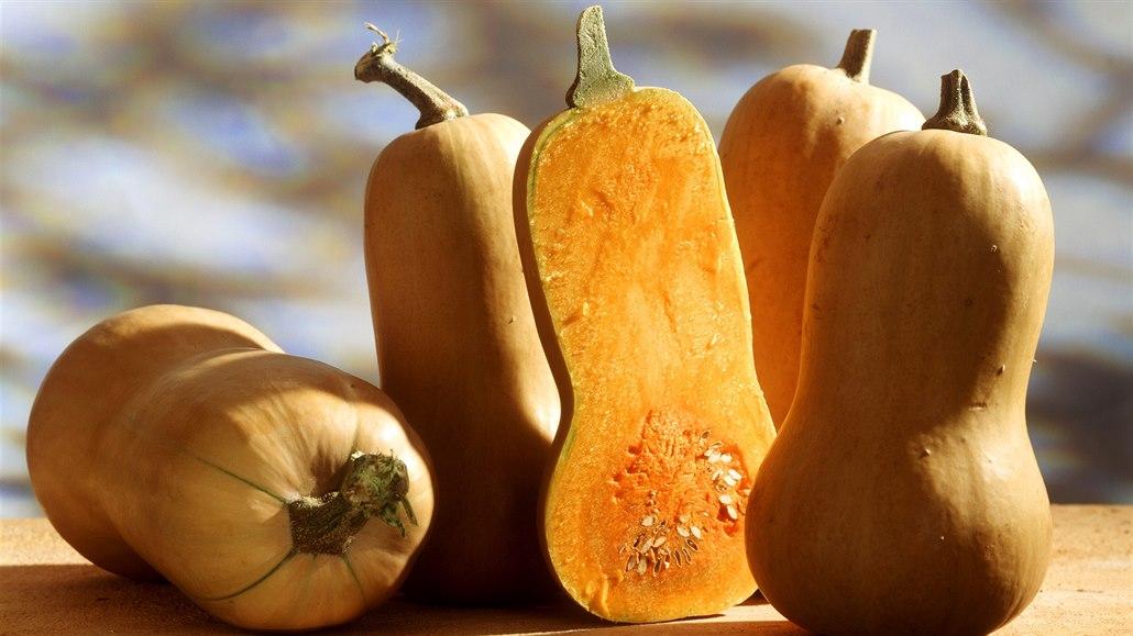Sezona dýní je tady. Vyznáte se v nich a umíte je zpracovat v kuchyni?