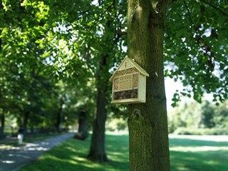 Hmyzí hotely v Karviné umístili například do parku Boženy Němcové.