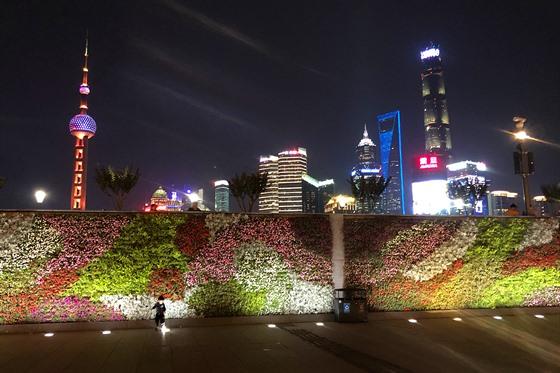 nejlepší webové stránky shanghai