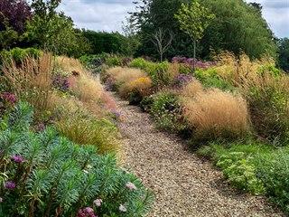 Vyzkoušejte vhodné druhy trav v kombinaci s trvalkami, krásně se v různých...