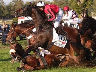 Britský kůň Rathlin Rose (vpředu) v sedle s žokejem Jamesem Bestem dopadá po...