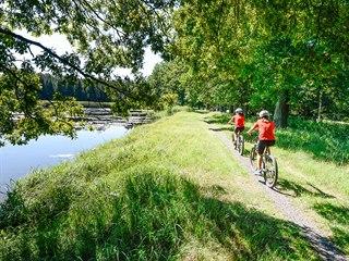 Rezervace Hradčanské rybníky zahrnuje čtyři lesní rybníky a chrání pestré...