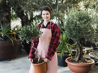 Menší rostliny zvládnete do zimní zahrady (nebo do skleníku či domů)...