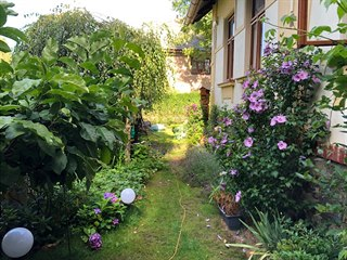 Zahradu majitelé chalupy udržují ve venkovském duchu, respektují veškeré její...