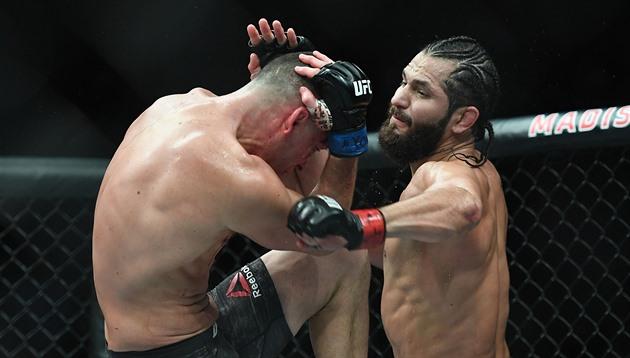 UFC hodlá pořádat zápasy bojových umění na soukromém ostrově
