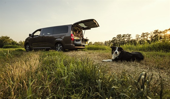 Toyota Proace Verso Nomad