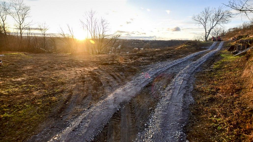 V Praze 8 kácí stromy. Lidé mají obavy, že se na chráněném území bude stavět