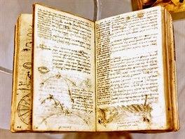 Poznámky geniálního tvůrce a autora Leonarda da Vinci