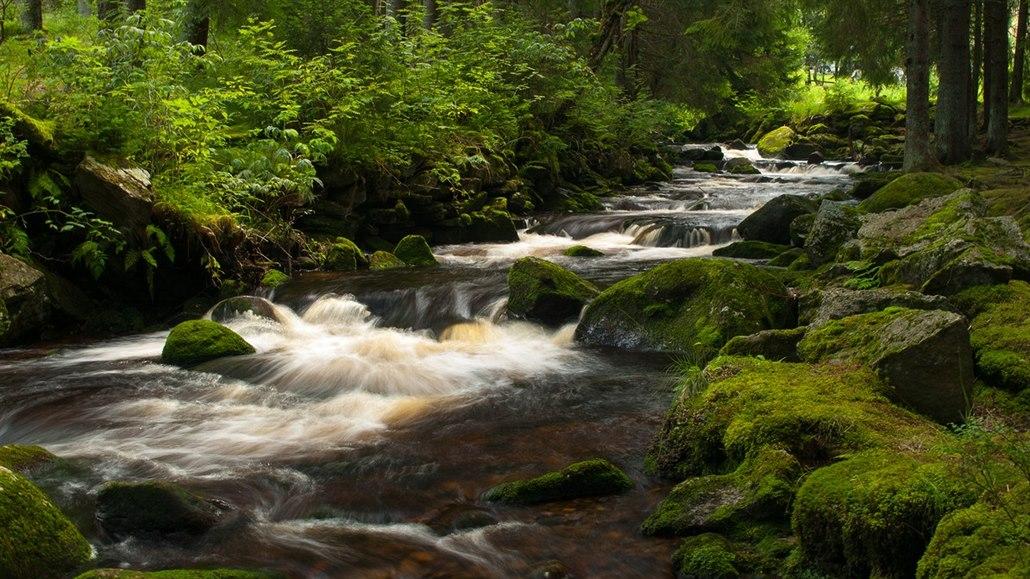 Šumava, kterou nesmíte vynechat. Údolí Vydry přitahuje turisty jako magnet