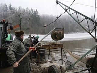 Kolem tří set metráků ryb vydala voda Velkého Dářka, které je se svojí rozlohou...