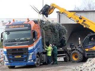 Z Havlíčkova Brodu v pátek odpoledne vyrazil transport s vánočním stromem do...