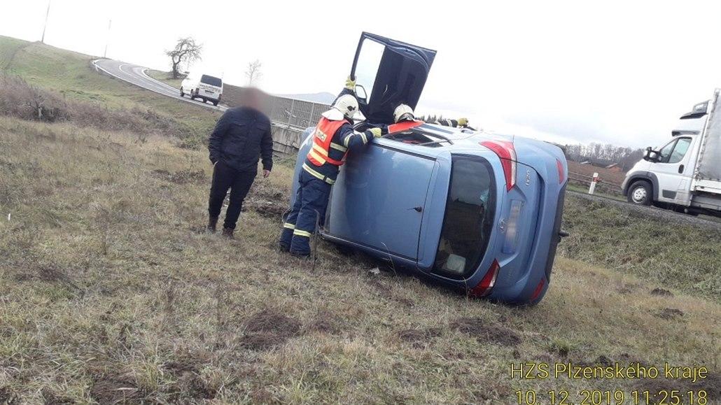 Řidička vezla nezajištěného psa, když se na něj otočila, převrátila vůz