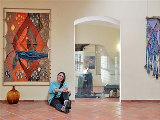 Drahomíra Němcová Jandová vystavuje své práce v Sokolově.